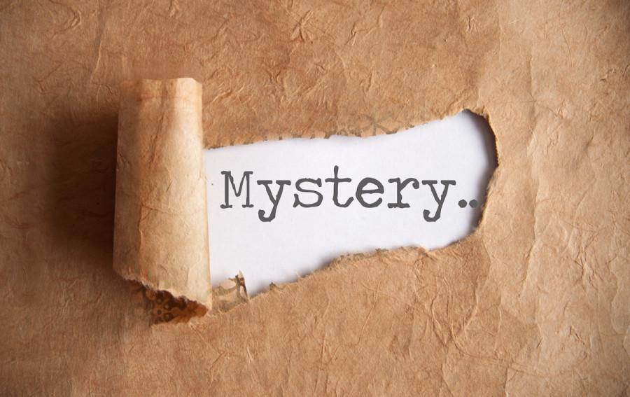 Mystery Photo